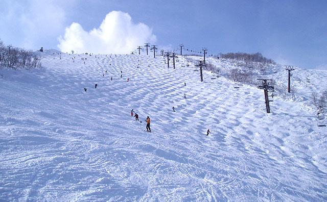 2020 びゅう スキー